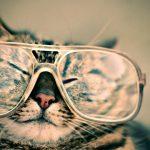 Dobry optyk, czyli jaki? – 3 ważne cechy