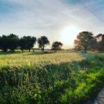 Atrakcje w Polsce – co warto zwiedzić?